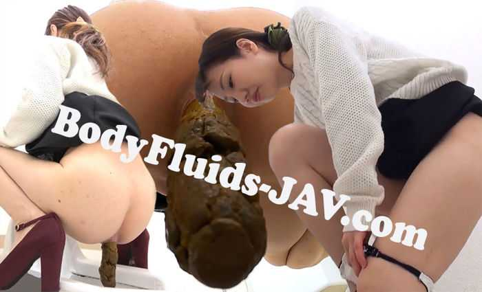 BFSR-302 The Toilet Excretions 5 Angles トイレ排泄5角度 HD